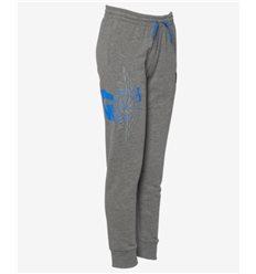 Детские / Женские Штаны Jordan Wings Futura серые с синим